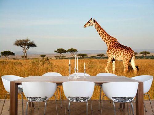Жираф на 3Д обоях